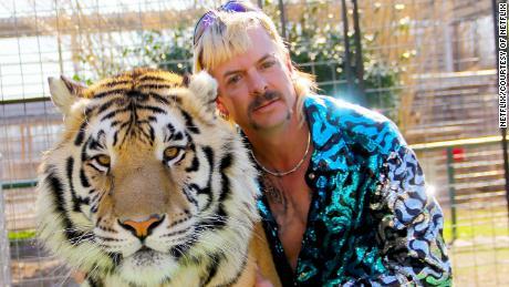 Che cosa è successo ai grandi gatti di '' Tiger King ''?