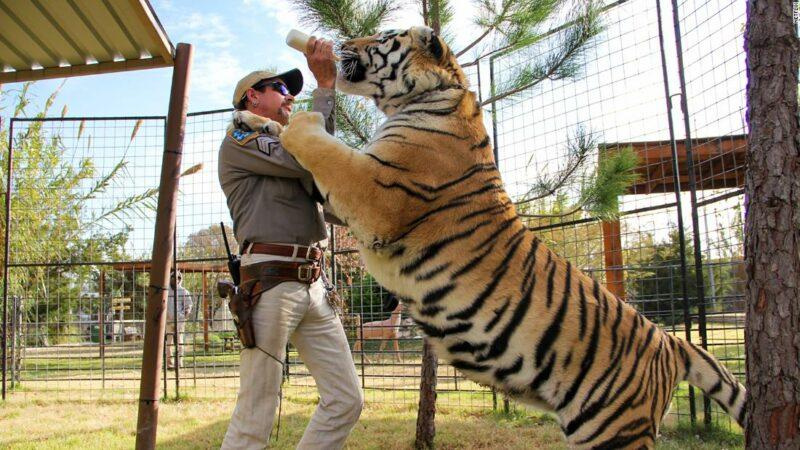 """Il team di """"Tiger King"""" Joe Exotic va a Carole Baskin per ottenere il suo zoo"""