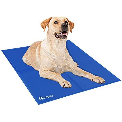 30 Le migliori recensioni di tappetino refrigerante per cani testate e qualificate con guida all'acquisto